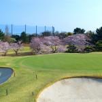 桜の季節Ⅰ